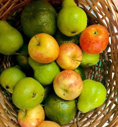 סושי פירות או שיפודי פירות?