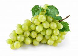 ענב לבן במשקל